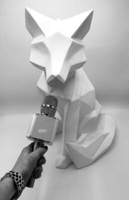 Wolfkat interview