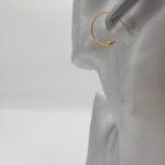 wolfkat oorbellen geometrics rondjes en ovalen cirkel met pijl goud